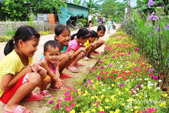 Đẹp ngỡ ngàng con đường hoa ở miền quê Nghệ An - Ảnh 2.