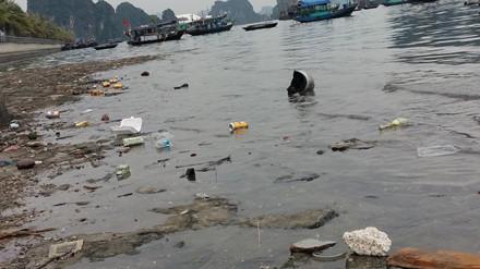 Kinh hoàng rác bủa vây vịnh Hạ Long - Ảnh 3.