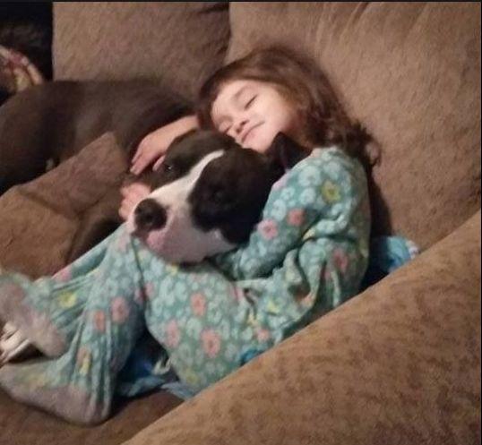 Mỹ: Tìm kẹo nhưng thấy súng, bé gái 4 tuổi tự giết mình - Ảnh 2.