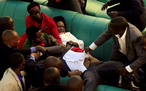 Đấm đá, cấu xé điên cuồng trong cuộc họp quốc hội - Ảnh 1.