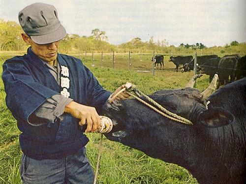 Loại thịt bò đắt hơn cả bò Kobe có mặt tại Sài Gòn - Ảnh 1.