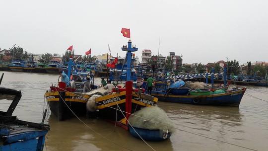 Bão số 12 quật Phú Yên - Khánh Hòa, tha Ninh Thuận - Bình Thuận - Ảnh 2.