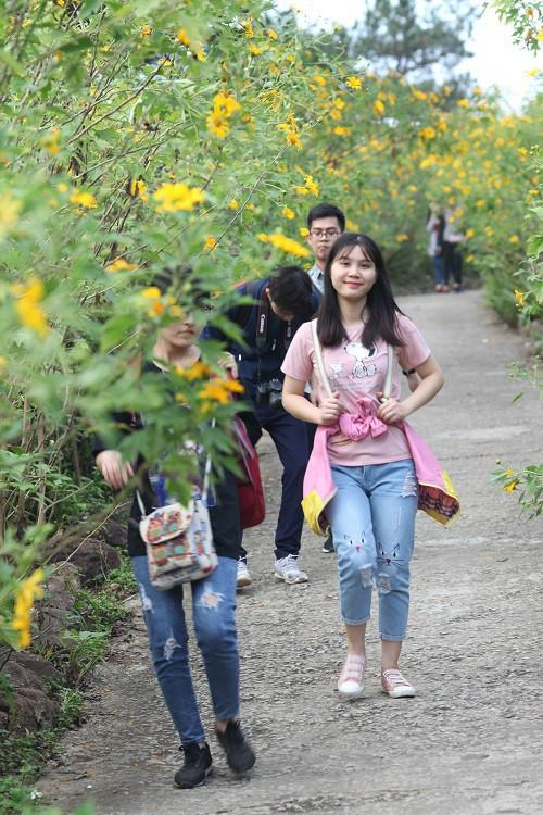 Đẹp nao lòng rừng hoa dã quỳ dưới chân núi Tản - Ảnh 12.
