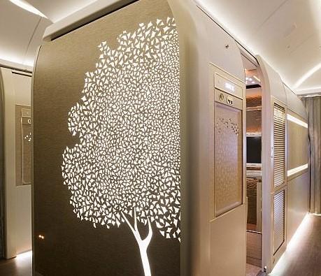 Khoang hạng nhất với không gian riêng cho hành khách - Ảnh 2.