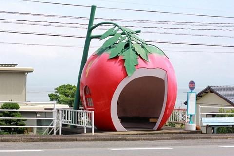 Những trạm xe buýt độc lạ chỉ có ở Nhật Bản - Ảnh 1.