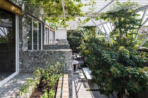 Vườn rau gần 600 m2 ở TP HCM giành giải kiến trúc quốc tế - Ảnh 1.