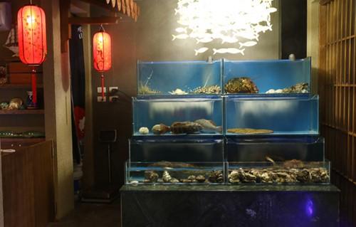 Hải sản Nhật đang bơi: Sáng ở Tokyo, chiều lên bàn nhậu Hà Nội - Ảnh 1.