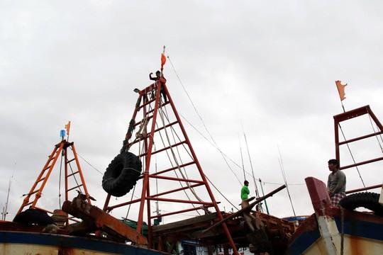 Người Cà Mau yên bình và rạng rỡ sau khi bão Tembin tan - Ảnh 19.