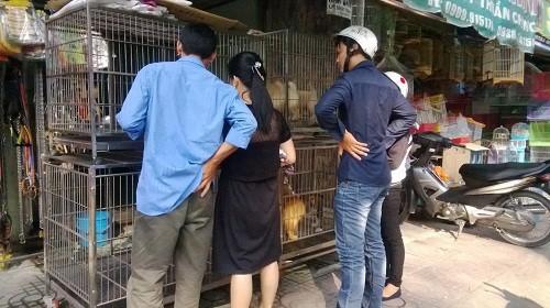 Những khu chợ chỉ bán một mặt hàng ở Việt Nam - Ảnh 13.