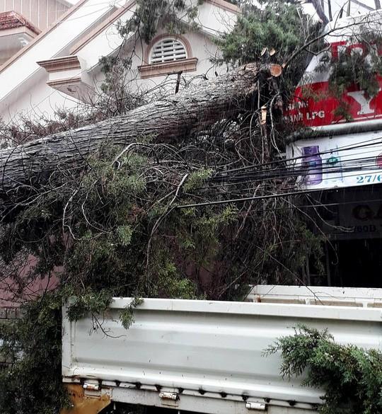 Lâm Đồng: 2 người chết, nhiều nơi bị cô lập do bão - Ảnh 17.