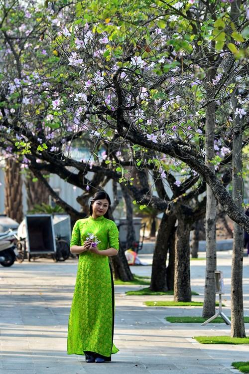 Mùa hoa ban nở thu hút rất đông các bạn trẻ và các nhiếp ảnh gia thỏa sức lưu lại những khoảnh khắc đẹp