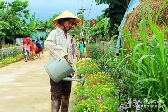 Đẹp ngỡ ngàng con đường hoa ở miền quê Nghệ An - Ảnh 4.