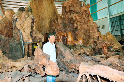 Kỳ bí gốc bàng như hang động được trả 35 tỉ ở Sóc Trăng - Ảnh 2.