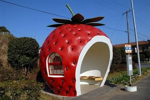 Những trạm xe buýt độc lạ chỉ có ở Nhật Bản - Ảnh 4.