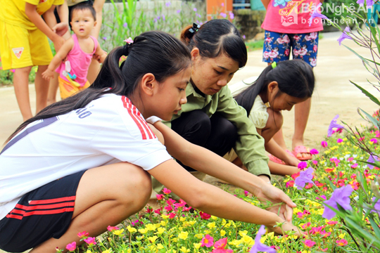 Đẹp ngỡ ngàng con đường hoa ở miền quê Nghệ An - Ảnh 6.