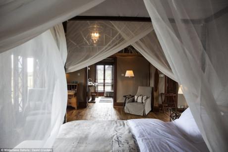 Phòng khách sạn tổ chim 5 sao đầu tiên trên thế giới - Ảnh 7.
