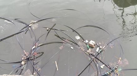 Kinh hoàng rác bủa vây vịnh Hạ Long - Ảnh 10.