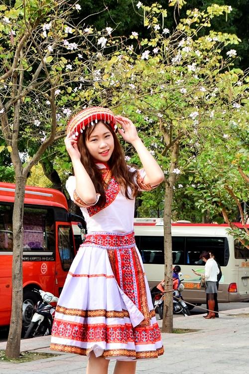 Hoa ban có nhiều loại nhưng được trồng phổ biến ở Hà Nội là những cây cho hoa tím pha trắng