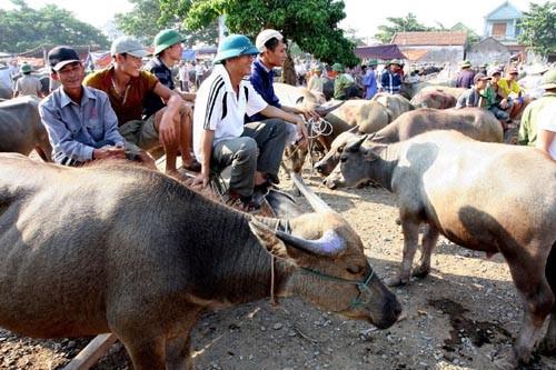 Những khu chợ chỉ bán một mặt hàng ở Việt Nam - Ảnh 10.
