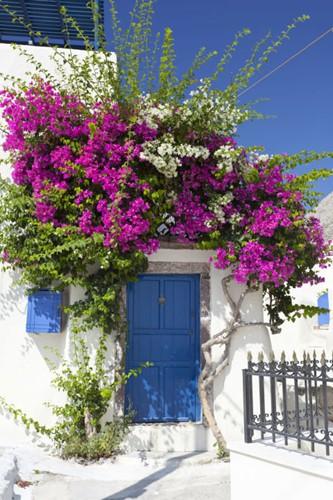 Muôn kiểu trang trí mặt tiền nhà với hoa cực hút mắt - Ảnh 10.
