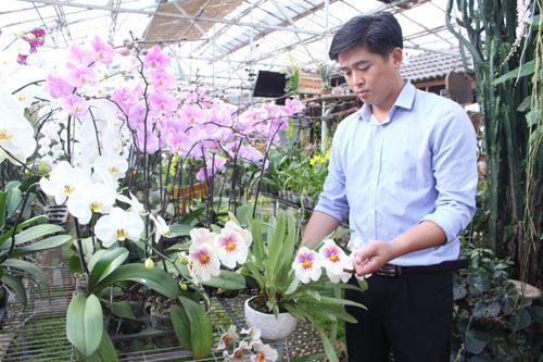 Soái ca hoa lan ở Đà Lạt - Ảnh 1.