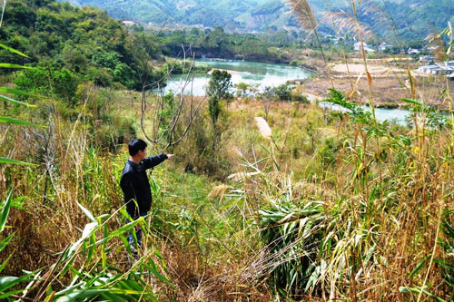 Thủy điện Chư Pông Krông sẽ lấy hơn 5 ha rừng đặc dụng Ảnh: Cao Nguyên