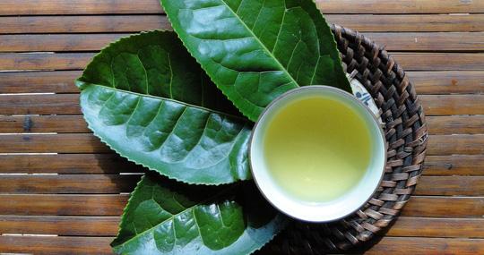 Uống trà xanh buổi sáng có rất nhiều lợi ích cho sức khỏe
