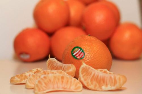 Cẩn trọng khi mua hoa quả có nhãn số 3, 4 hoặc 9 - Ảnh 4.