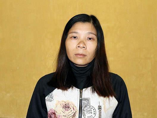 1 người phụ nữ bị bắt vì hoạt động nhằm lật đổ chính quyền - Ảnh 1.