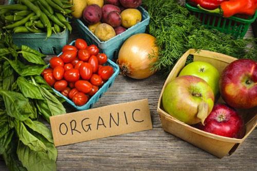 Nông nghiệp hữu cơ Iran trỗi dậy - Ảnh 1.