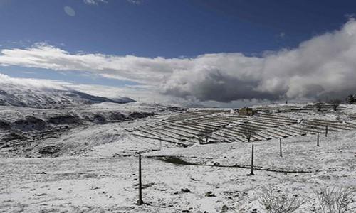 Kinh ngạc tuyết phủ trắng sa mạc ở Trung Đông - Ảnh 5.