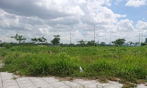 Đất nền, nhà phố TP HCM trầm lắng trên thị trường thứ cấp - Ảnh 1.