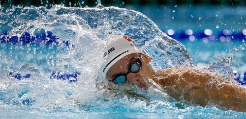 Rái cá sông Gianh Huy Hoàng bơi đến Olympic - Ảnh 1.