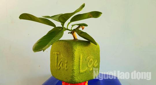 """Ngắm 2 loại trái cây tạo hình """"độc lạ"""" đón Tết Nguyên đán 2019 - Ảnh 3."""