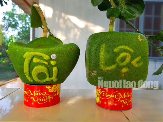 """Ngắm 2 loại trái cây tạo hình """"độc lạ"""" đón Tết Nguyên đán 2019 - Ảnh 7."""