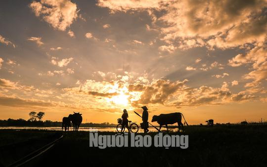 Một ngày trên phá Tam Giang - Ảnh 3.