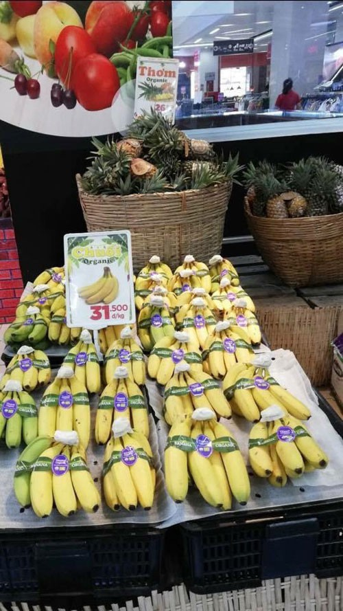 Đỏ mắt tìm trái cây organic Việt