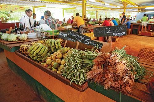 Nông nghiệp organic cứu Cuba - Ảnh 1.