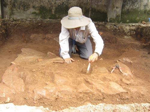 Bí ẩn cuộc đời vua Quang Trung: Cuộc tìm kiếm lăng mộ hơn 200 năm - Ảnh 2.