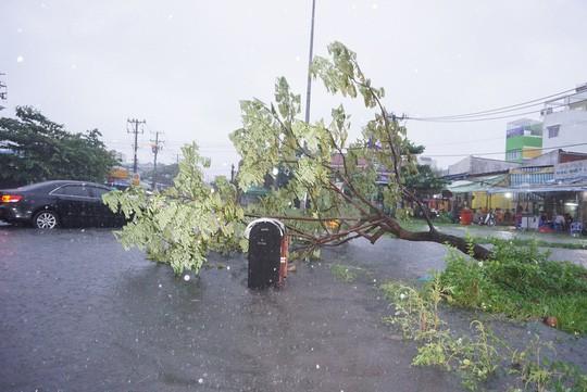 Ảnh hưởng bão số 9: TP HCM mưa lớn, cây gãy đổ đè chết người đi đường - Ảnh 6.