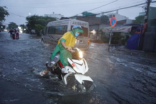 Ảnh hưởng bão số 9: TP HCM mưa lớn, cây gãy đổ đè chết người đi đường - Ảnh 3.