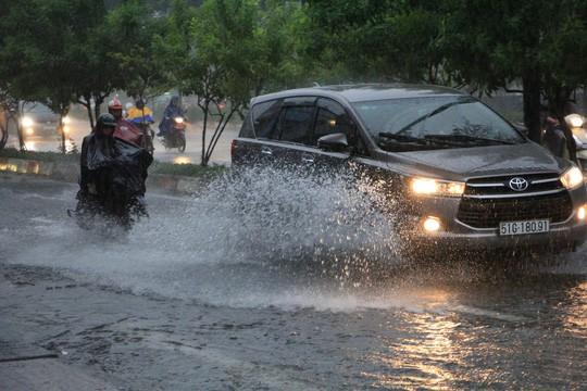 Ảnh hưởng bão số 9: TP HCM mưa lớn, cây gãy đổ đè chết người đi đường - Ảnh 7.