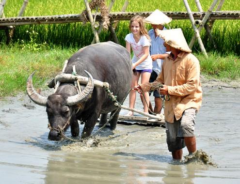 Du lịch Việt Nam nhìn từ vụ chia đôi đoàn 4.000 khách - Ảnh 2.