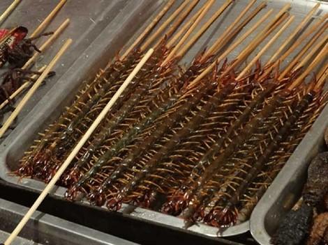 Có bao nhiêu người dám ăn đặc sản rết nướng ở Trung Quốc? - Ảnh 1.