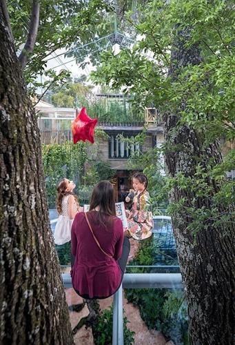 Chiêm ngưỡng nhà lơ lửng trên cây trong suốt độc nhất thế giới - Ảnh 2.