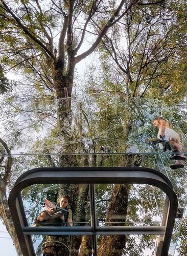 Chiêm ngưỡng nhà lơ lửng trên cây trong suốt độc nhất thế giới - Ảnh 3.