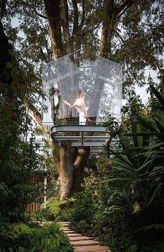 Chiêm ngưỡng nhà lơ lửng trên cây trong suốt độc nhất thế giới - Ảnh 4.