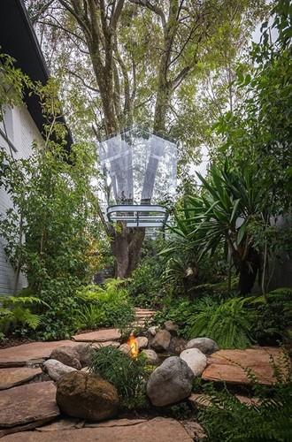 Chiêm ngưỡng nhà lơ lửng trên cây trong suốt độc nhất thế giới - Ảnh 6.