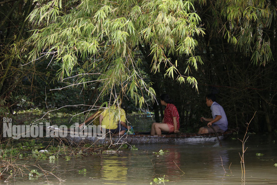 Nắng lên, Tam Kỳ vẫn chìm trong nước, người chết ở Quảng Nam tăng - Ảnh 4.