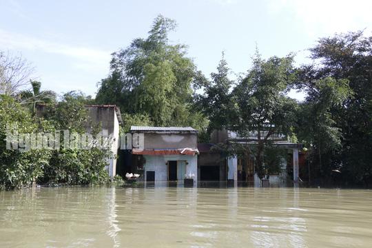 Nắng lên, Tam Kỳ vẫn chìm trong nước, người chết ở Quảng Nam tăng - Ảnh 7.